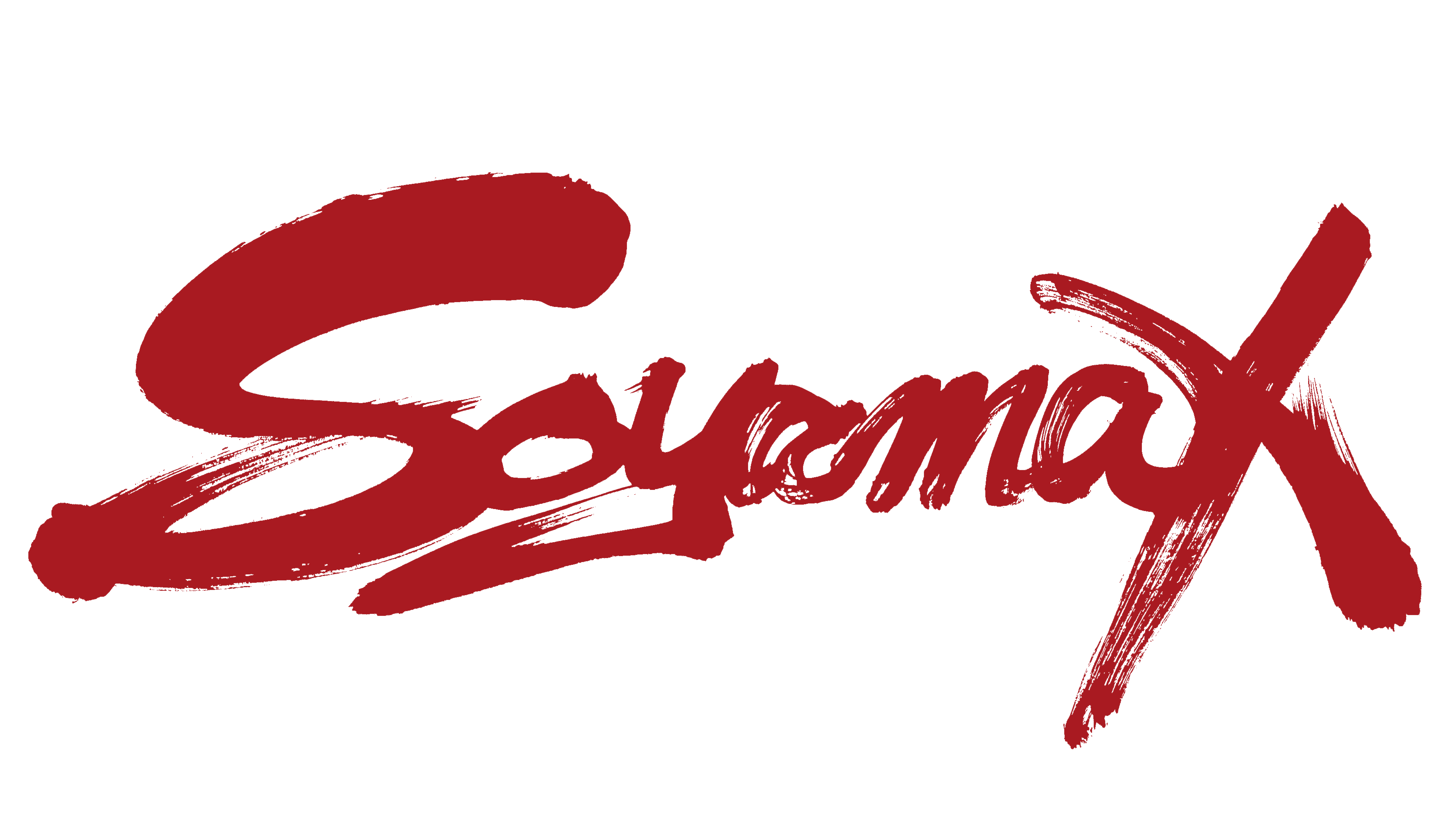 世界を渡り絆と縁を魂の書で表現する縁筆書家soyamax